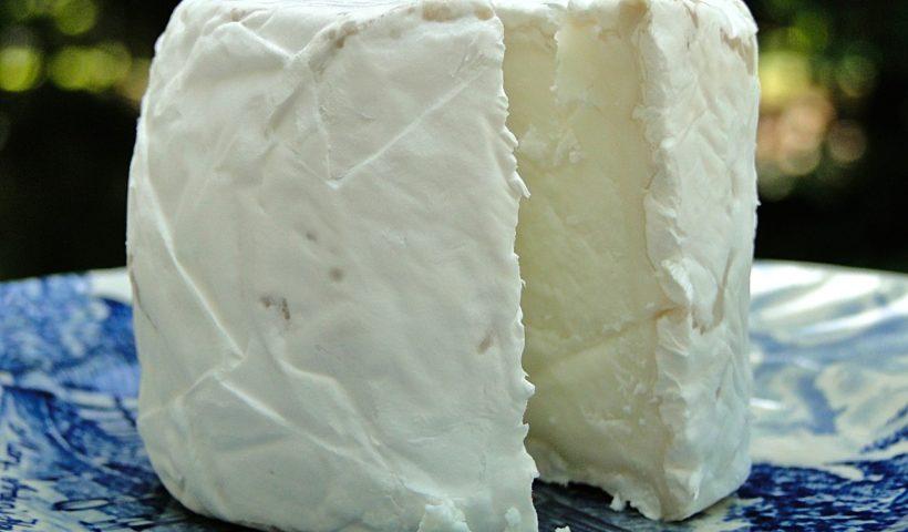 Un fromage de chèvre
